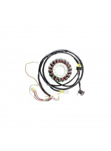 ELECTROSPORT Stator Polaris - 151058