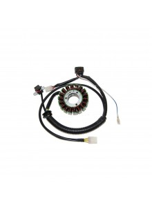ELECTROSPORT Stator Polaris - 151059
