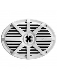 Boss Audio Haut-parleur 350W Universel