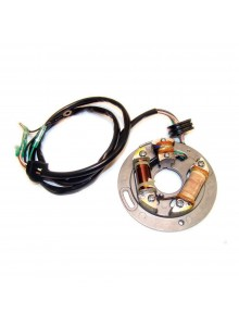 WSM Plaque de stator Yamaha - 004-242