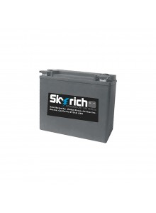 Skyrich Batterie au lithium-ion super performance HJVT-1-FPP