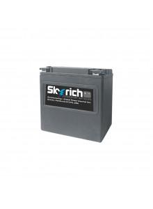 Skyrich Batterie au lithium-ion super performance HJVT-2-FPP